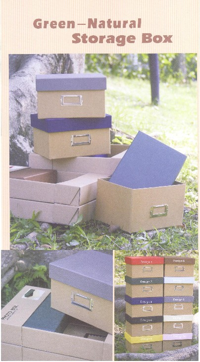 Green-Natural Storage Box