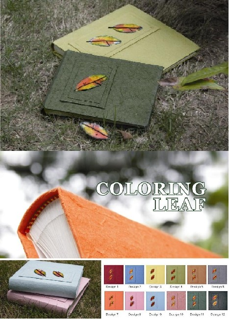 Coloring Leaf Collection (RN)